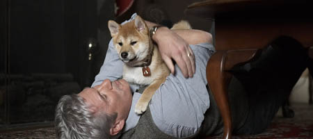 Хатико. Самый верный друг / Hachiko: A Dog