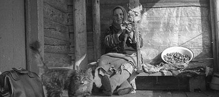 Таболина Людмила. Земля Ладыгино